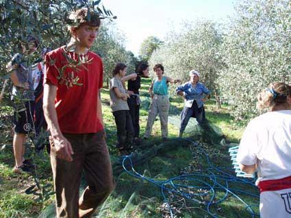 Auslegen der Netze