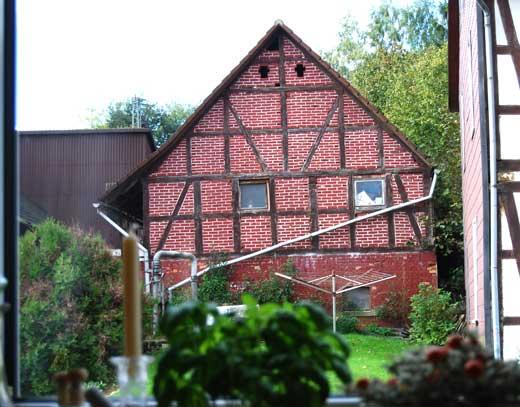 Ausblick aus dem Küchenfenster links