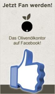 Fan werden auf Facebook