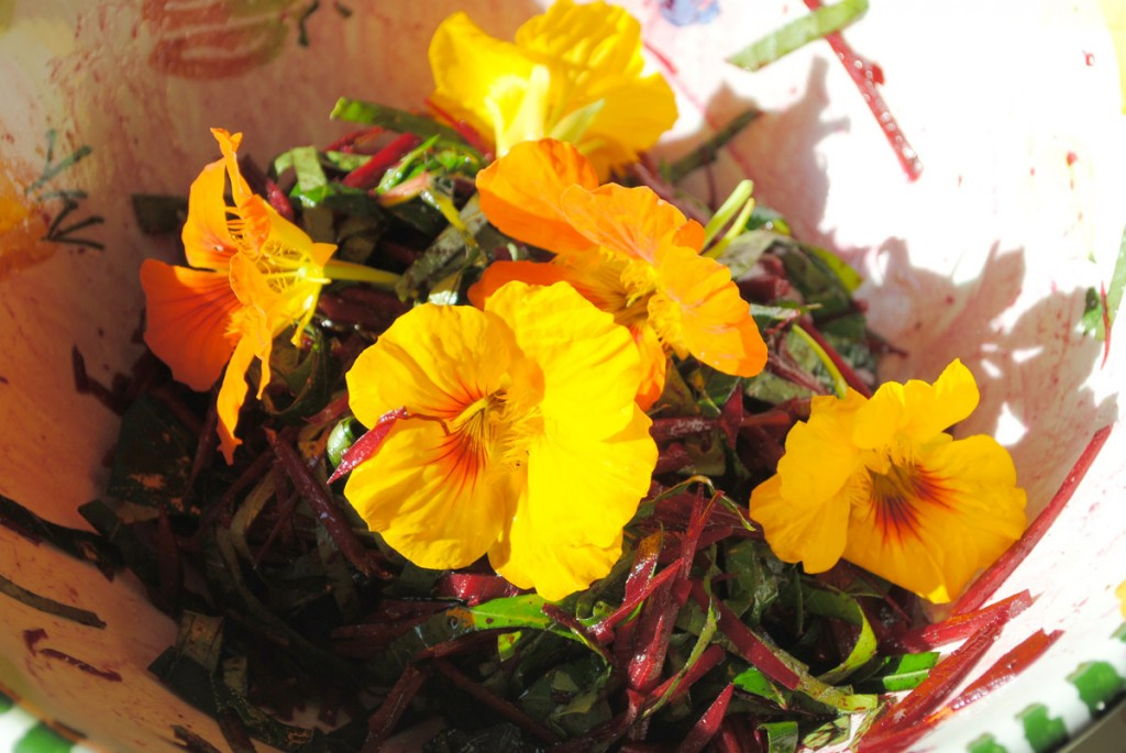 Rote-Bete-Salat mit Kapuzinerkresse