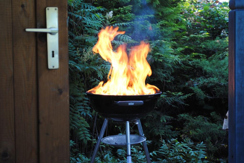 Angefeuerter Grill